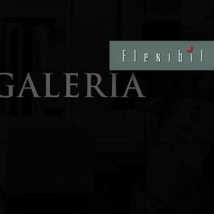 brosura galeria flexibil 2007