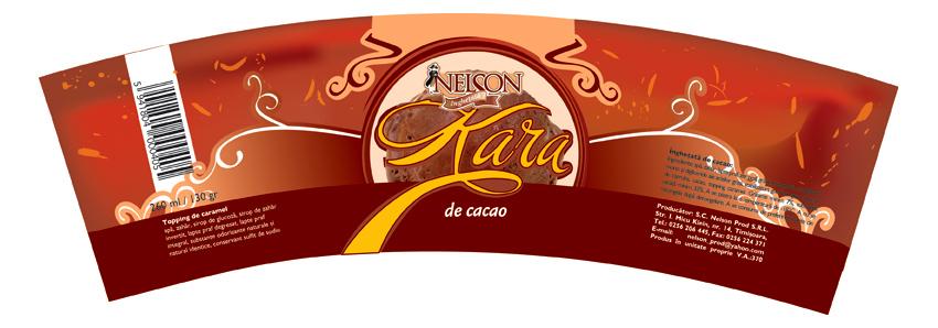 ambalaj cutie de inghetata, nelson kara  de cacao, 2009