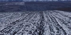 "tema - peisaj perioada - februarie  2012 diapozitiv color Kodak E100 format 4 x 5"" camera: Sinar F2 obiectiv:  - Fujinon SWS 210 mm"