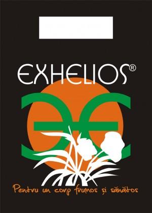 punga exhelios 2010
