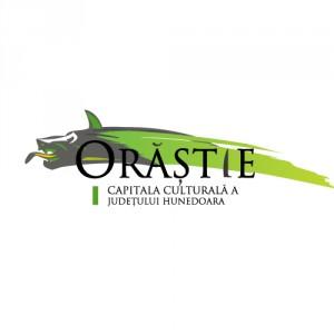 logo in cadrul programului de promovare turistica a orasului